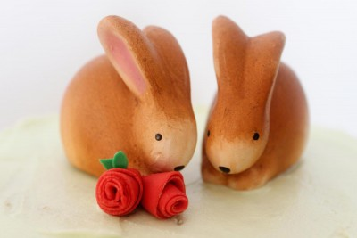 MG 7285 bunnies and roses web